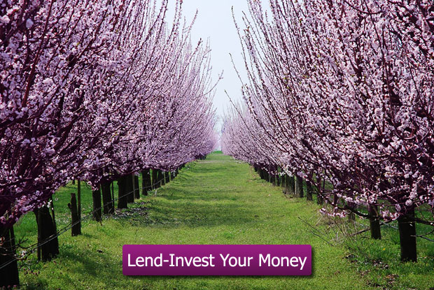 Lend-Invest Your Money